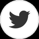 Icône Twitter